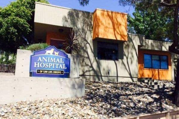 Entrace to Animal Hospital of San Luis Obispo