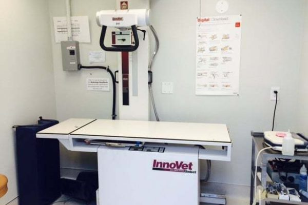 the digital radiography room. pictured is the x-ray machine and necessary medical supplies on a cart