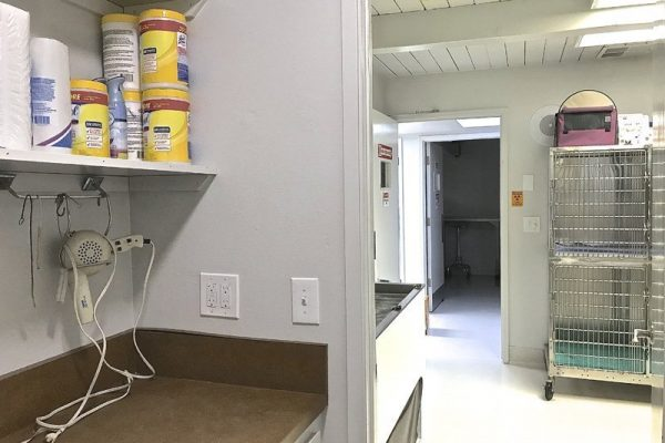 A small kitchen attached to our kennels is used for storage and diet preparation.